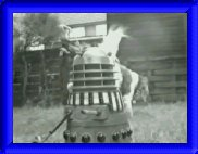 This one is entitled Dalek with dog cocking his leg in background
